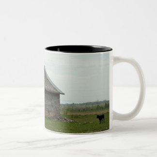 Old Barn and Calf Mug