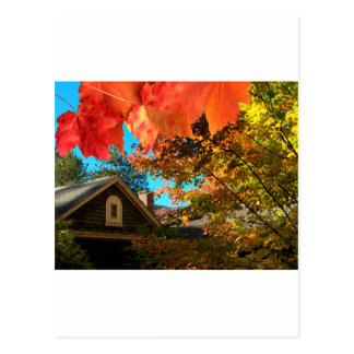 Old Barn Foliage Postcard