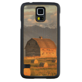 Old barn framed by hay bales and dramatic maple galaxy s5 slim case