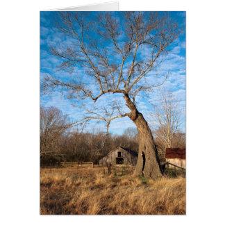 Old Barn in Autumn Card