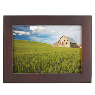 Old Barn Surrounded by Spring Wheat Field 2 Keepsake Boxes