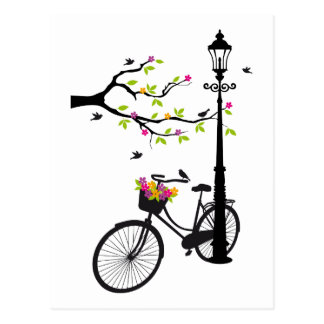 Old bicycle with lamp, flower basket, birds, tree postcard
