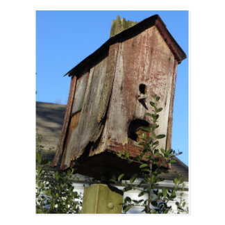 Old Bird House Postcard