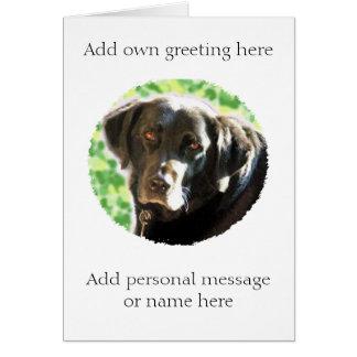 Old black Labrador photo card- add name message Card