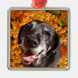 Old Black Labrador Silver-Colored Square Ornament
