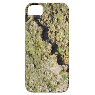 Old boulders with moss iPhone 5 cover