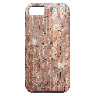 Old Brick Wall iPhone 5 Case