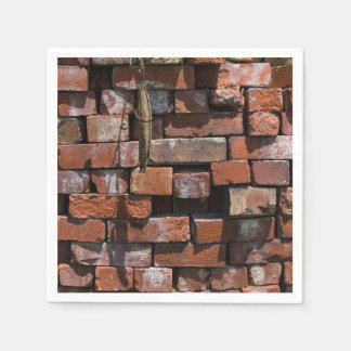 Old Bricks Abstract Disposable Napkin