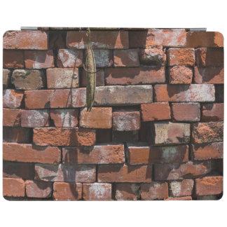 Old Bricks Abstract iPad Cover