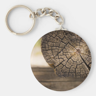 Old Cabin Wood Textures Basic Round Button Keychain