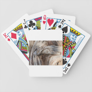 Old Canyon Tree Texture Bicycle Playing Cards