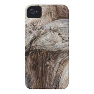 Old Canyon Tree Texture iPhone 4 Case-Mate Cases