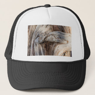 Old Canyon Tree Texture Trucker Hat