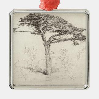 Old Cedar Tree in Botanic Garden, Chelsea, 1854 (p Silver-Colored Square Ornament