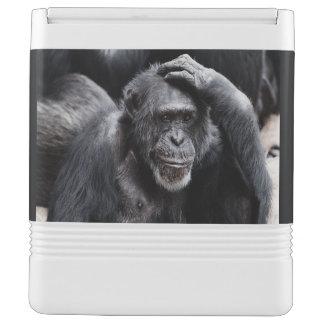 Old Chimpanzee custom cooler