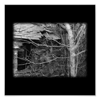 Old cottage and Tree. Black and white. Poster