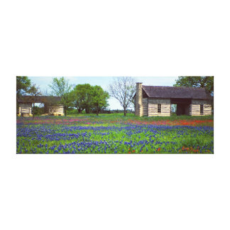 Old Dog Run Cabin in Field of Wildflowers Canvas Print