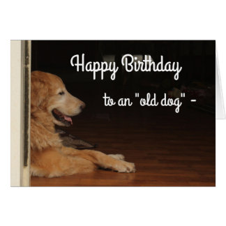 """Old Dogs"" 212 Birthday card"