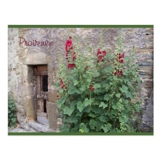 Old door with red honeysuccle , Provence postcard