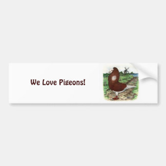 Old Dutch Capuchine Pigeon Bumper Sticker