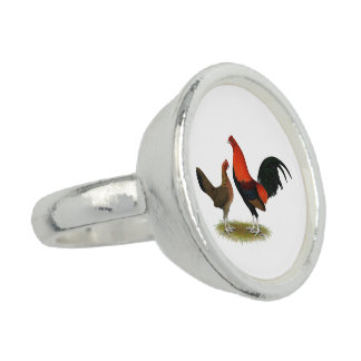 Old English Game Bantams:  BB Red Pair Ring