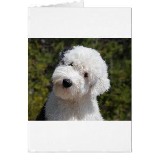 Old_English_Sheep_Dog pup Greeting Card