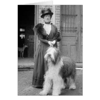 Old English Sheepdog, 1915 Greeting Card