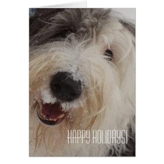 Old English Sheepdog Card - Happy Holidays!