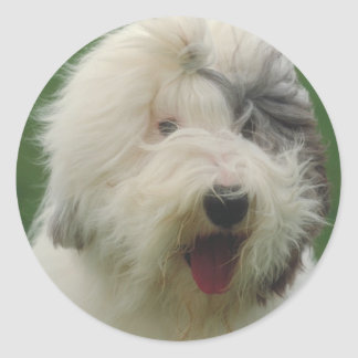 Old English Sheepdog Classic Round Sticker