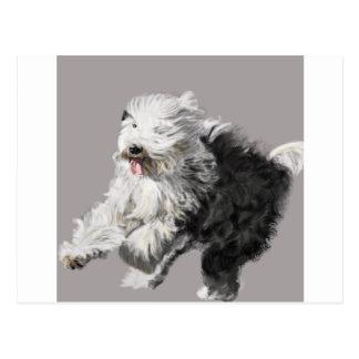 "Old English Sheepdog - ""Coming Through!"" Postcard"