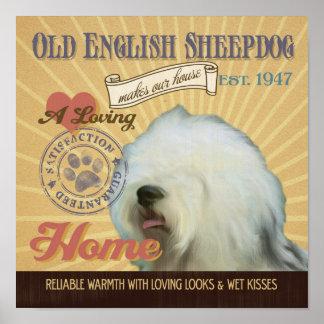 Old English Sheepdog Dog Art Poster