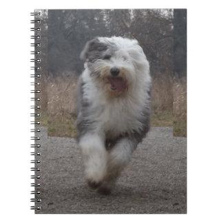 Old English Sheepdog Notebook - Run Dog!