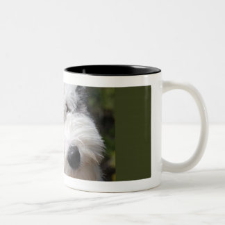old english sheepdog pup Two-Tone coffee mug