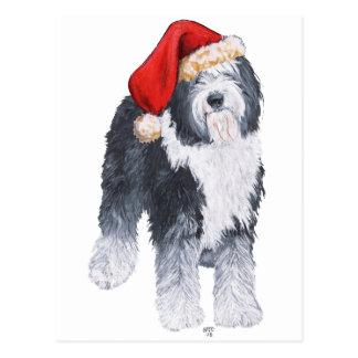Old English Sheepdog Santa Hat Postcard