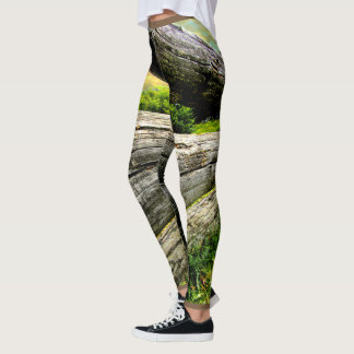 Old Farm Fence Leggings