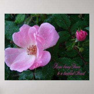 Old-Fashion Rose print
