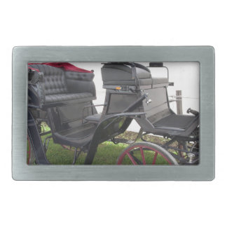 Old-fashioned horse carriage on green grass belt buckles