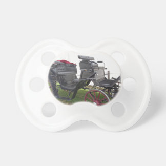 Old-fashioned horse carriage on green grass pacifier