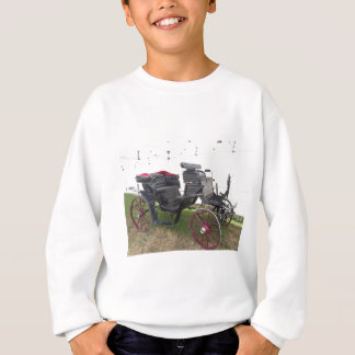Old-fashioned horse carriage on green grass sweatshirt