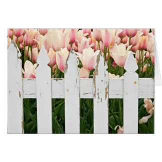 old fence with tulips card