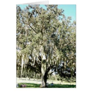 Old Florida Oak Card and Envelope