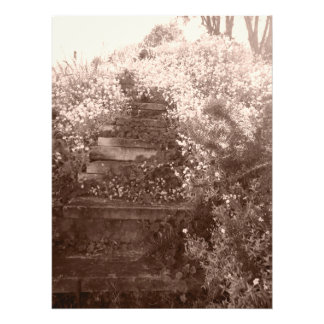 old garden steps photo print