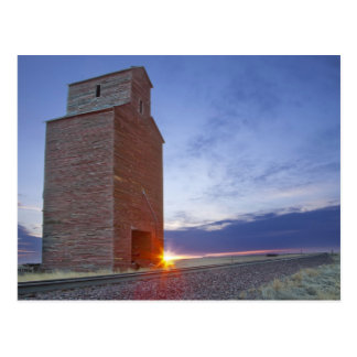 Old granary at Collins Montana at sunrise Postcard