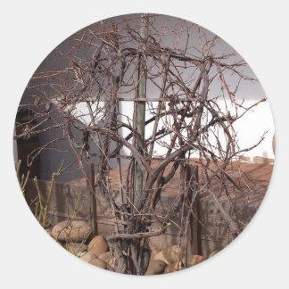Old Grape Vines Classic Round Sticker