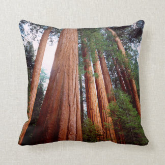 Old-growth Sequoia Redwood trees Throw Pillow