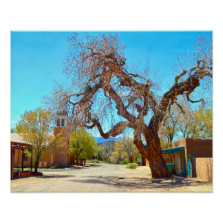 Old Hanging Tree, Cerrillos,  New Mexico Poster