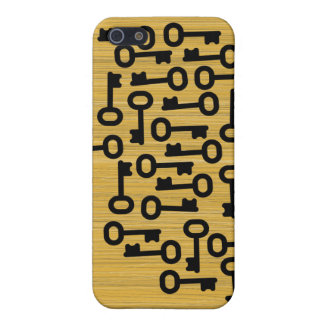 old key iPhone 5 case