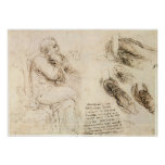 Old Man and Water Sketch by Leonardo da Vinci Poster