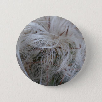 Old Man Cactus 2 Inch Round Button