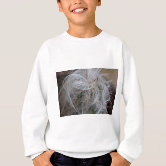 Old Man Cactus Sweatshirt